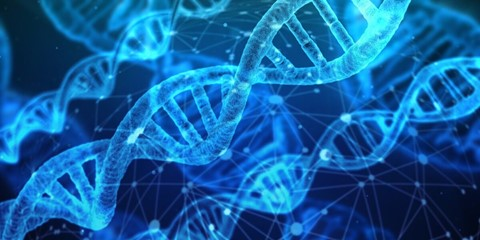 Gener/DNA